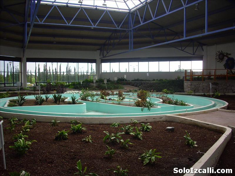 jardin_botanico_batiz1