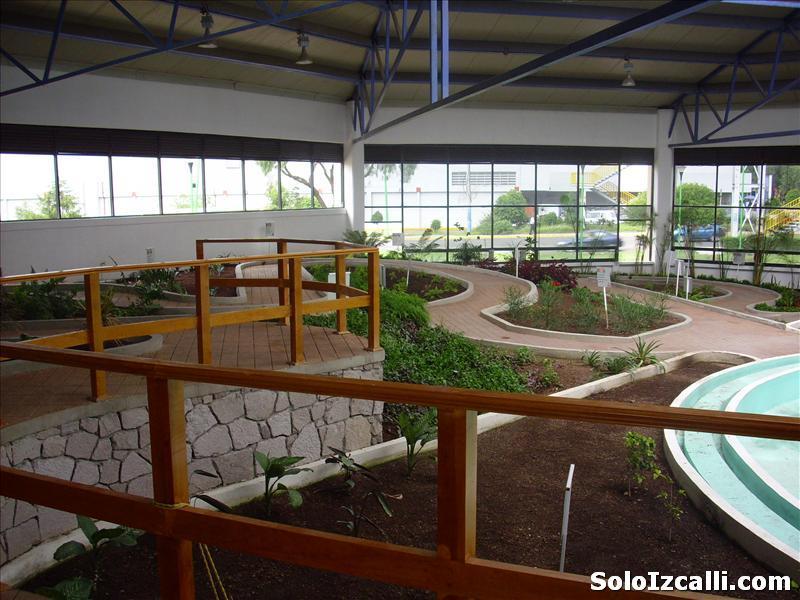 jardin_botanico_batiz4